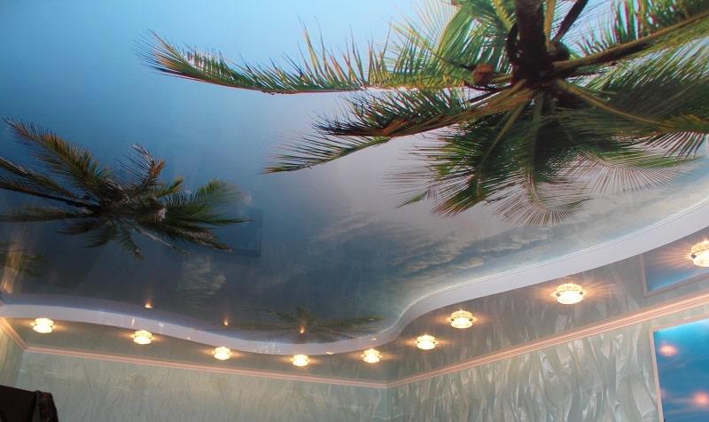 Натяжные потолки с фотопечатью и арт потолки №2